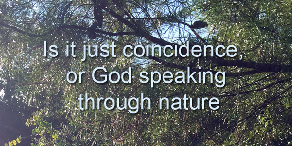 Is it coincidence or God speaking through nature?